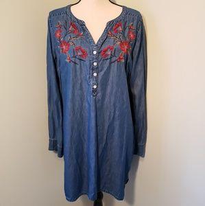 Express Indigo Embroidered Dress